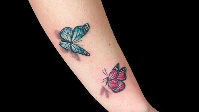farfalla web