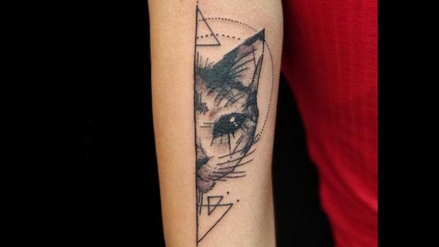 for web gatto
